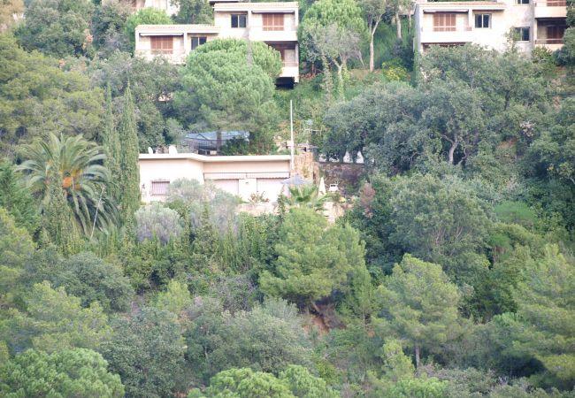 Maison à Tossa de Mar - Casa Mi Dushi