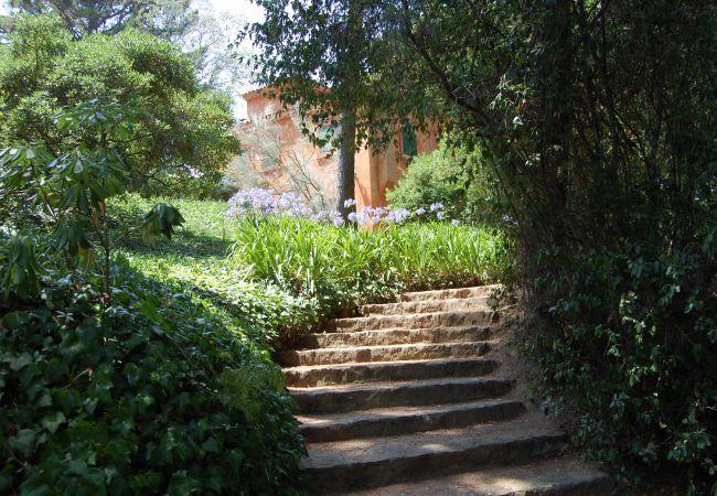 Villa in Lloret de Mar - Villa Clotilde Ibicenca